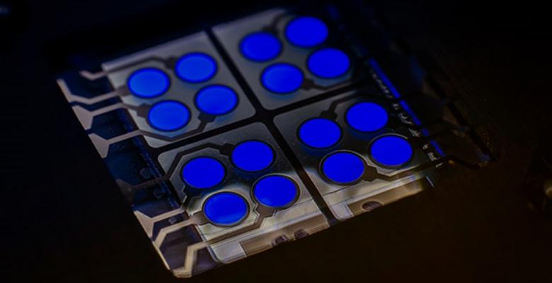 사이노라, OLED 기기의 효율성을 크게 향상시키는 형광 청색 이미터 공개