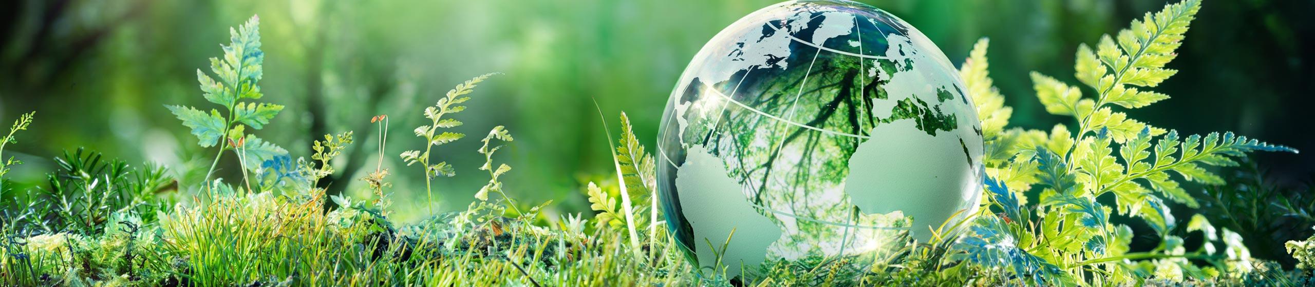 Nachhaltigkeit Banner